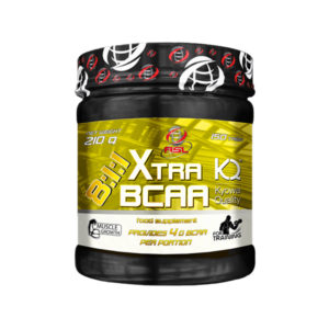 Bcaa 8 1 1 Xtra All Sport Labs